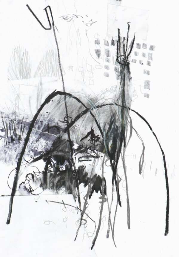 black and white expressive drawing of allotments